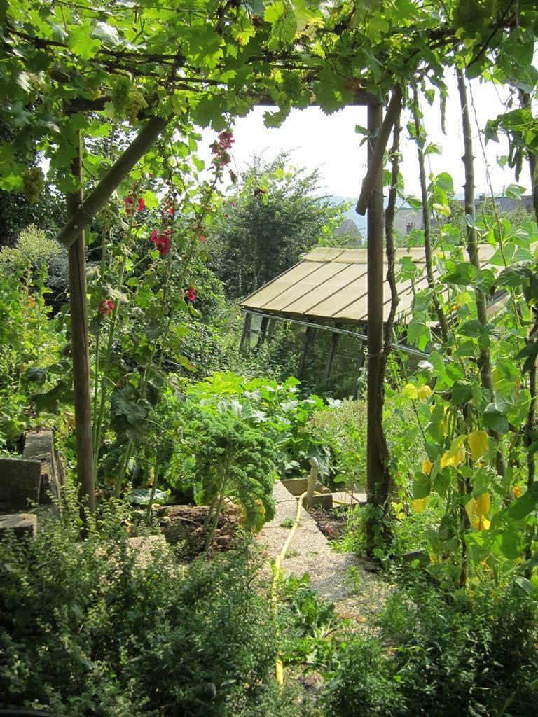 Jardin nature de Philippe Delwiche