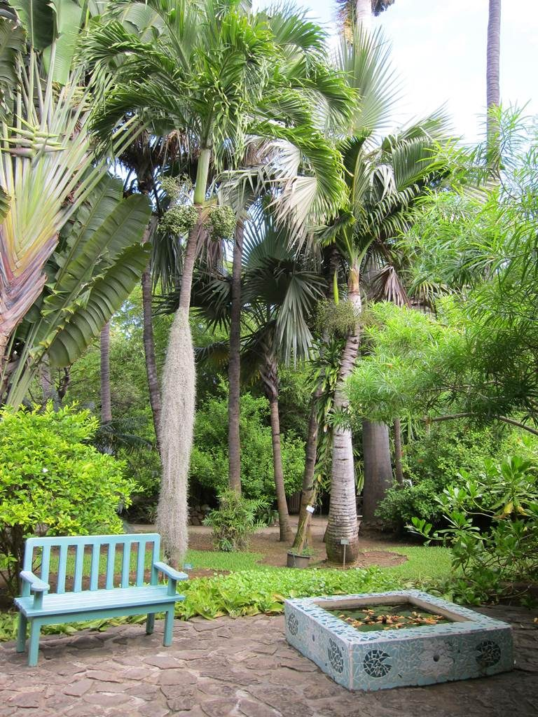 Jardin d'Eden Réunion