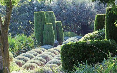 Le jardin de La Louve à Bonnieux