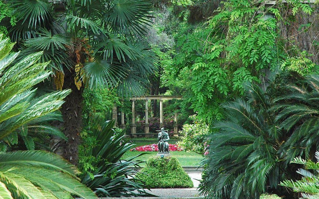 Villa Les Cèdres au Cap Ferrat, un jardin botanique mythique