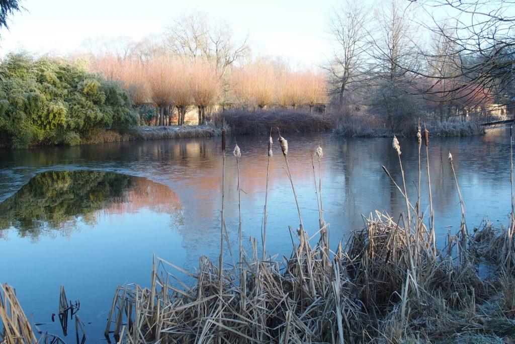 L'hiver à l'Abbaye d'Aywiers