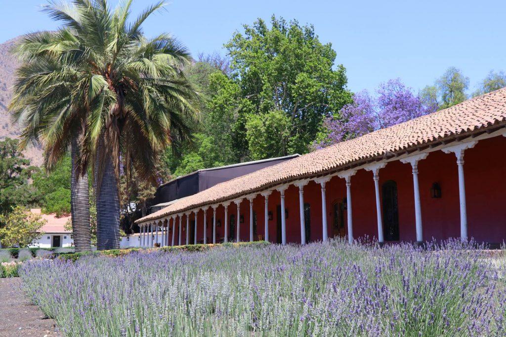 Chili Santa Rita