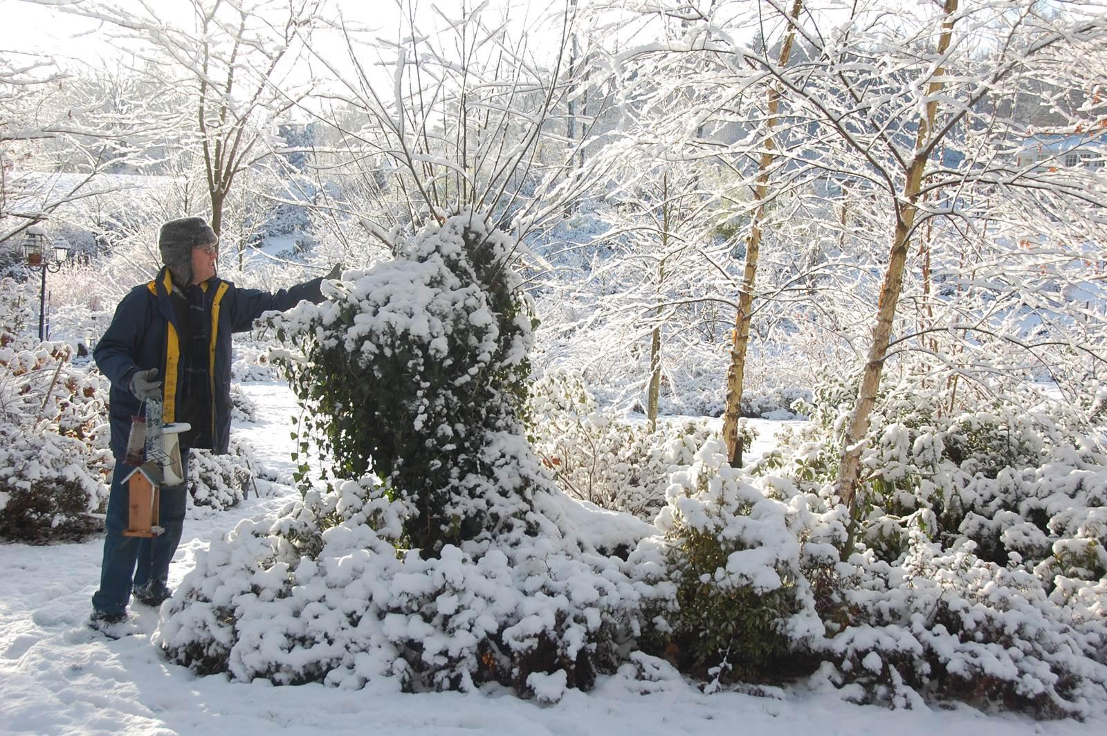 Fleurissart hiver