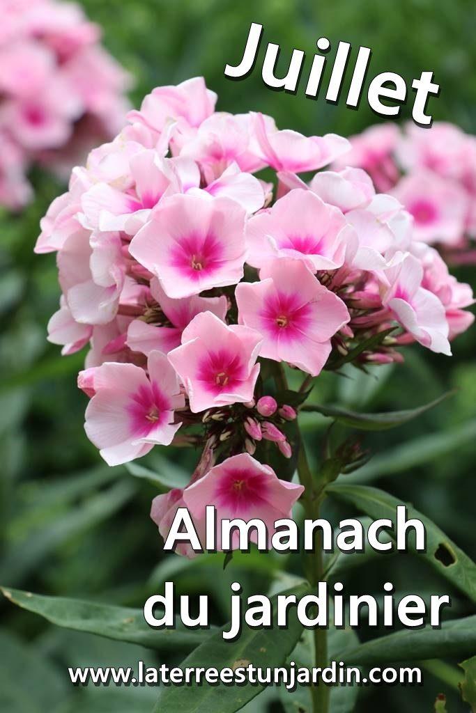 Jjuillet Almanach du Jardinier