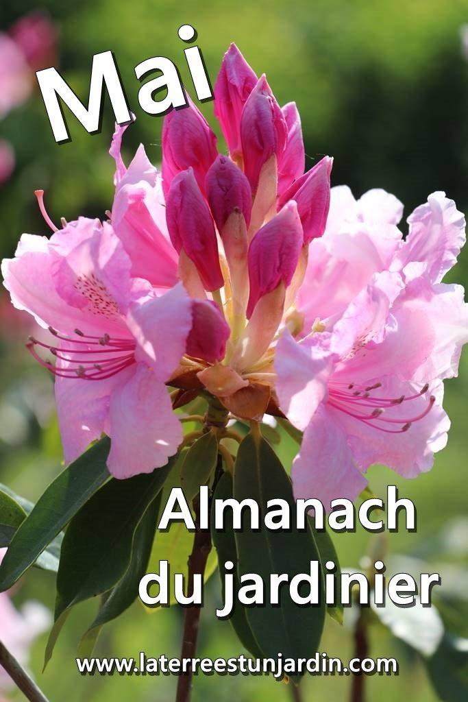 Mai Almanach du jardinier