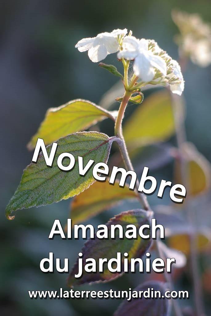 Novembre Almanach du Jardinier