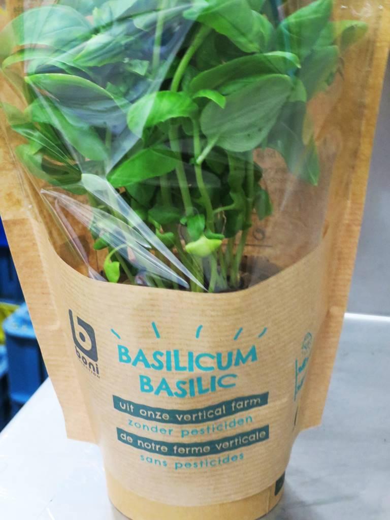 Basilic Bio-Planet