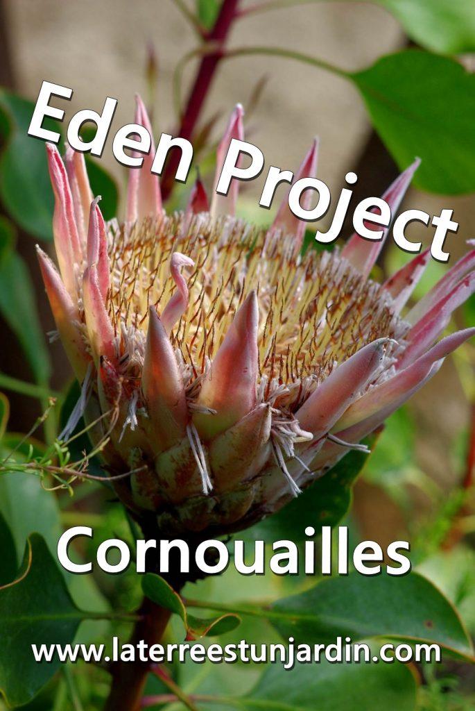 Eden Project Cornouailles