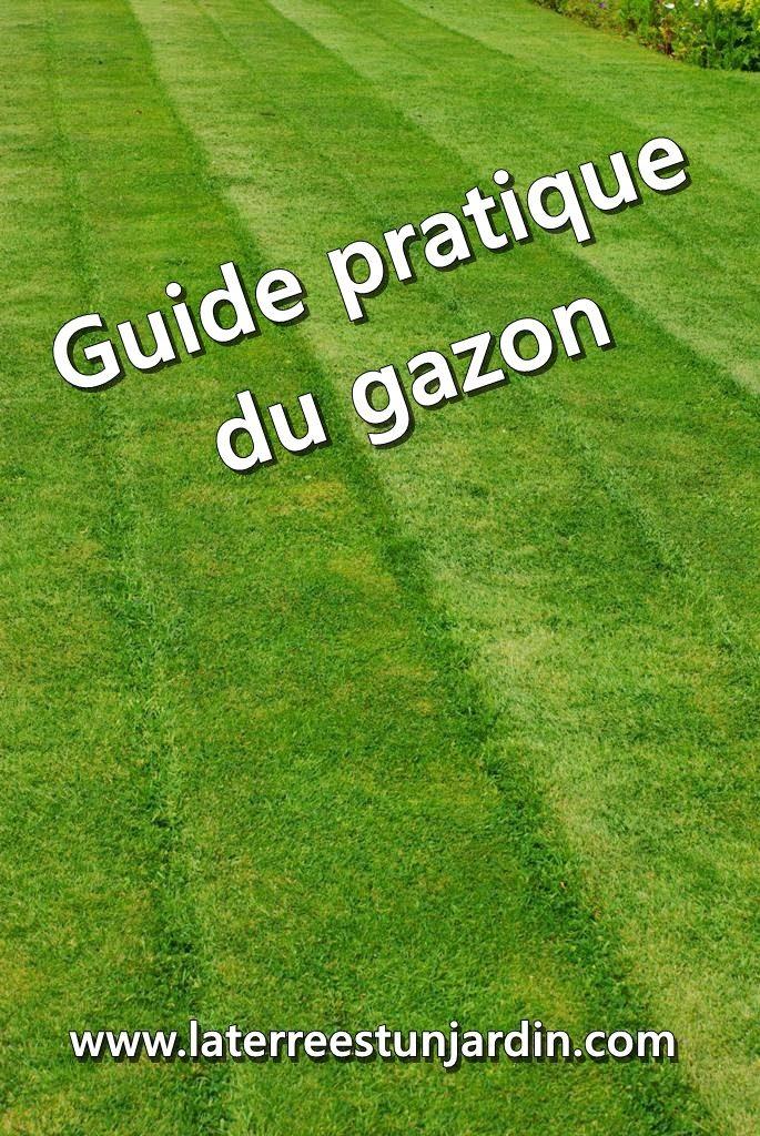 Guide pratique du gazon