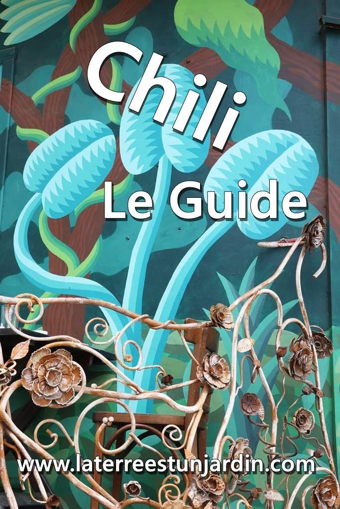 Guide du Chili
