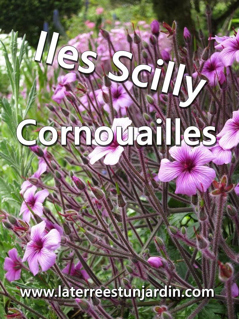Iles Scilly Cornouailles