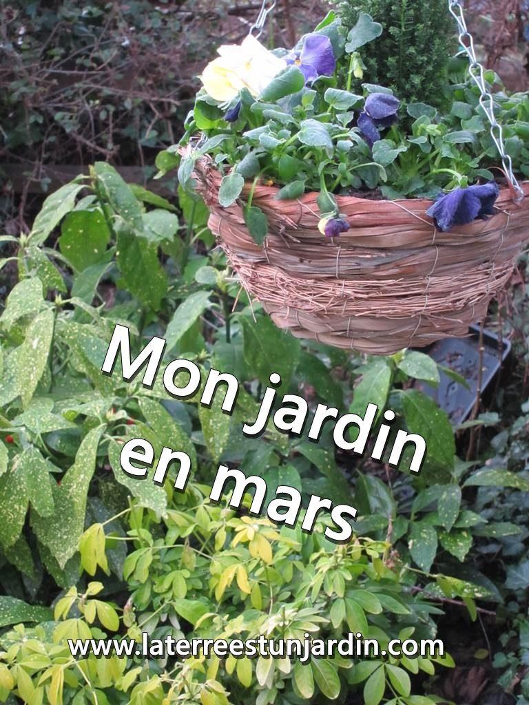 Mon jardin en mars