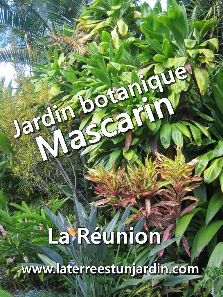Jardin botanique Mascarin