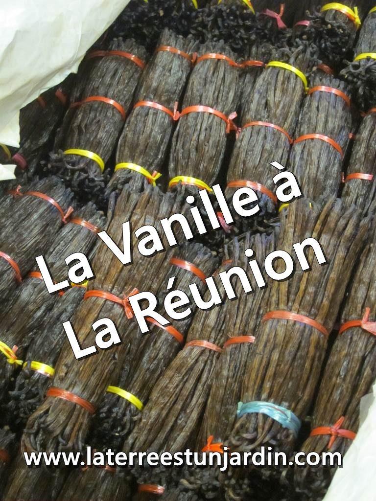 La Vanille Réunion