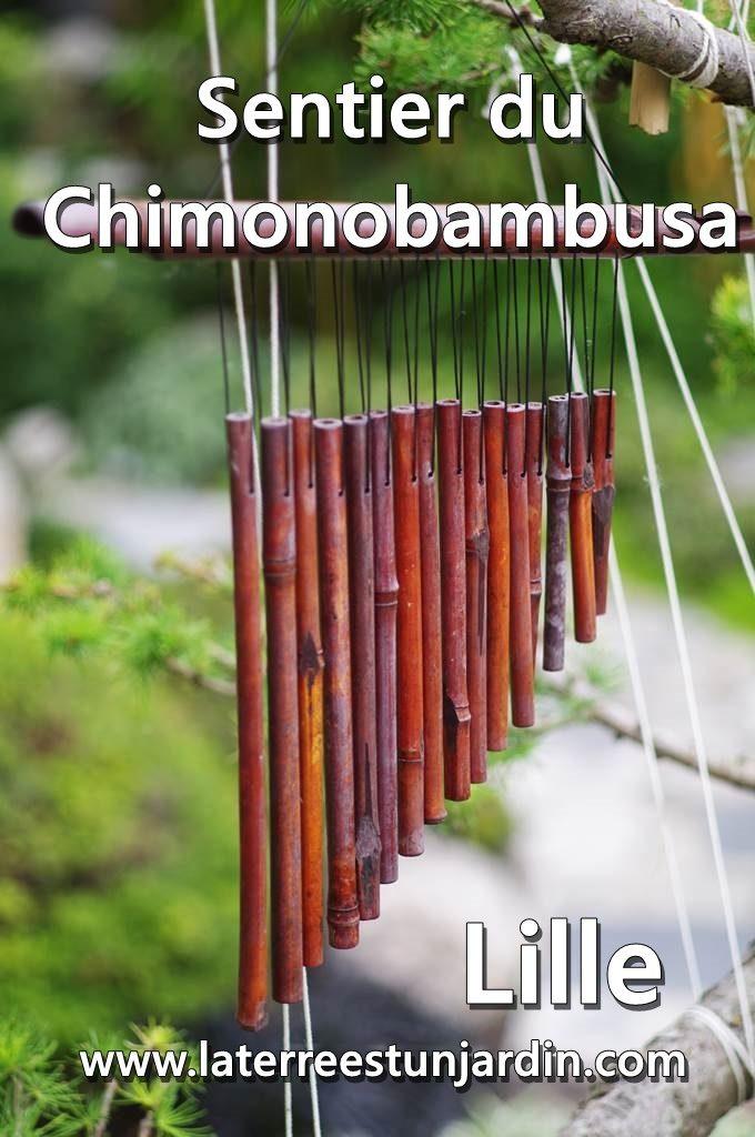 Sentier du Chimonobambusa
