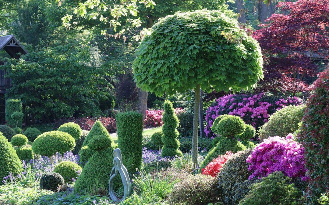 En vert et fleurs, le royaume d'André