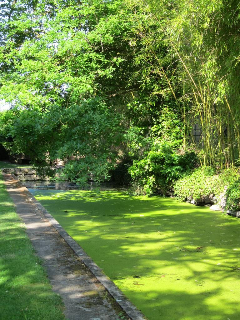 Jardin d'eau d'Ainay-le-Vieil