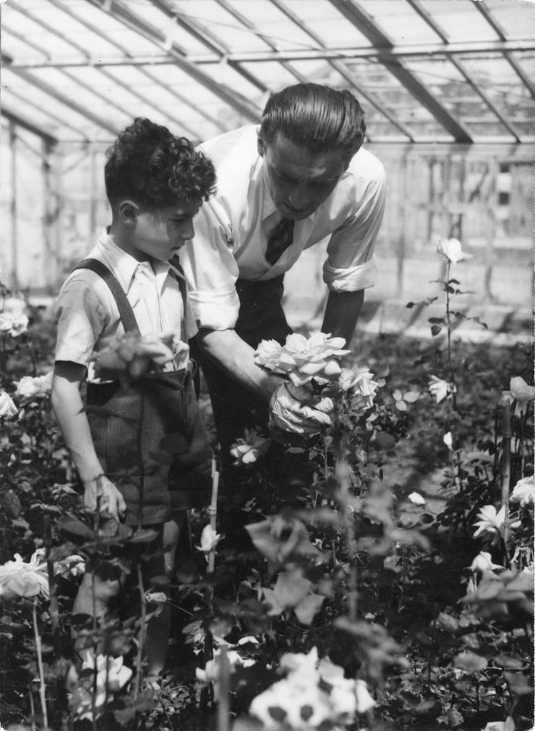 Alain et Francis Meilland