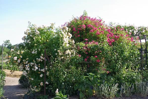 Châteaux et jardins du Berry
