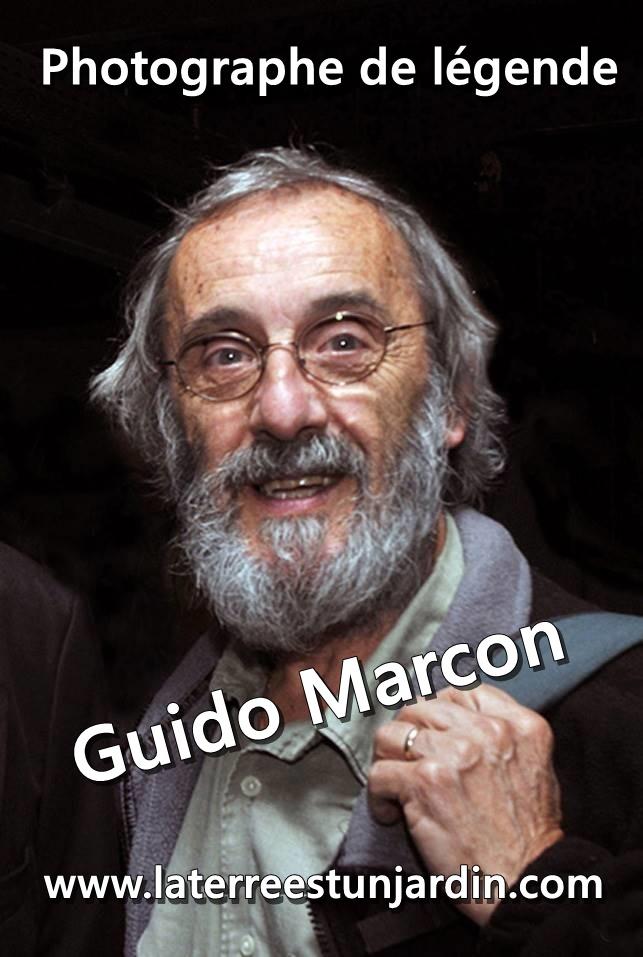 Guido Marcon
