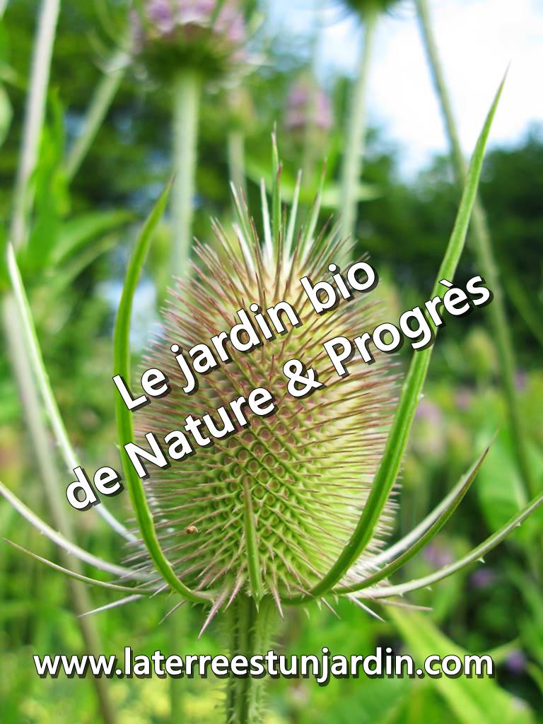 Jardin de Nature & Progrès
