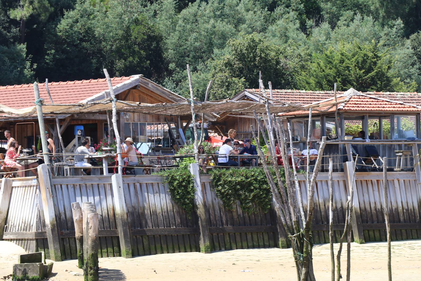 Bassin d'Arcachon huitres