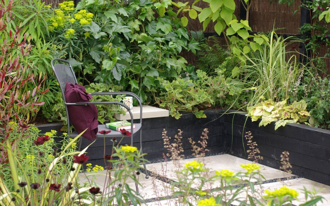 Jardins de ville, jardins de poche