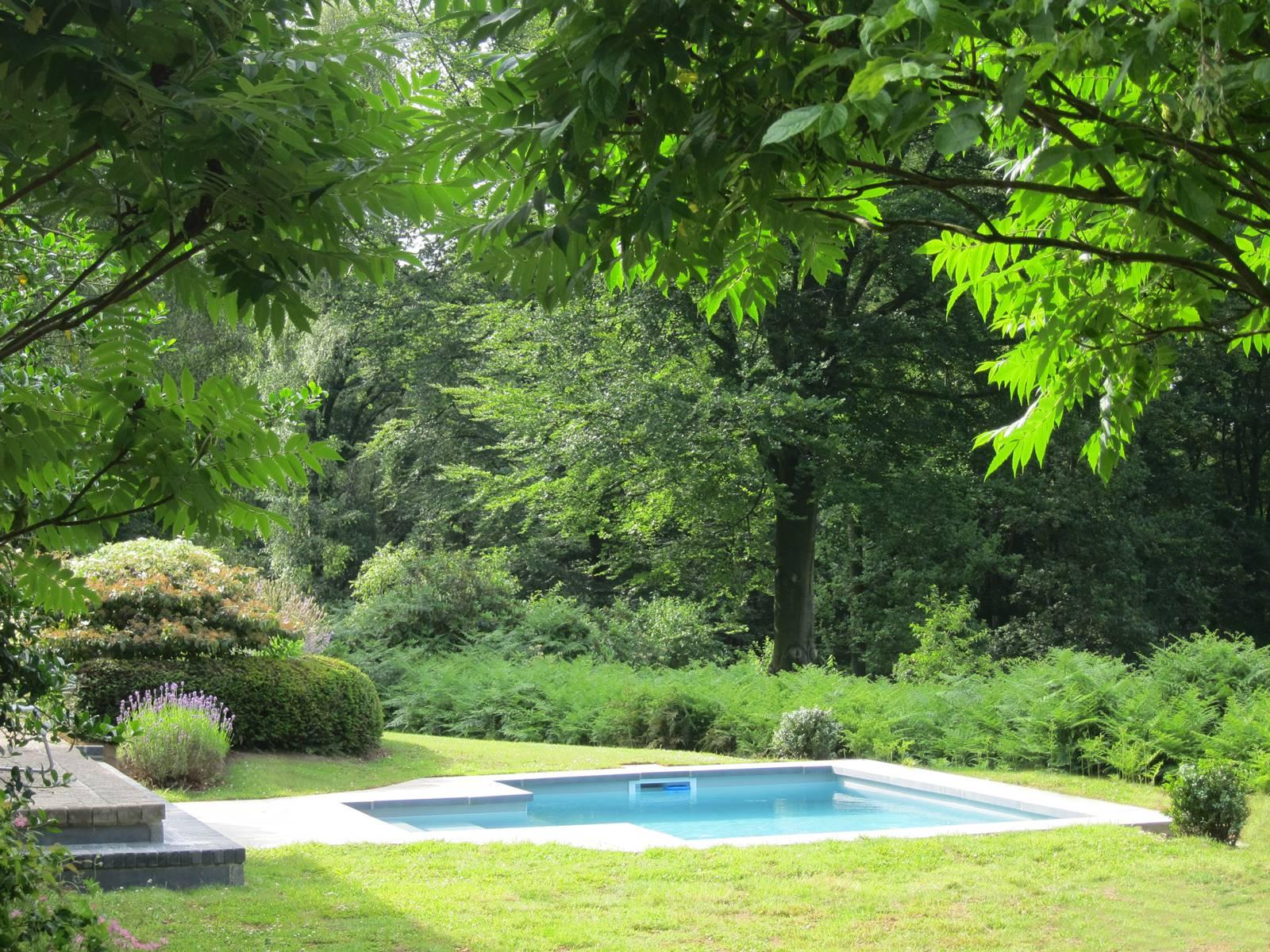Bois Eloi piscine