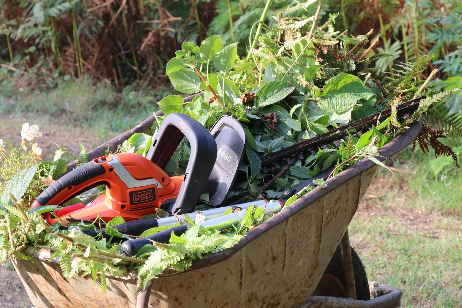 Bois Eloi jardinage