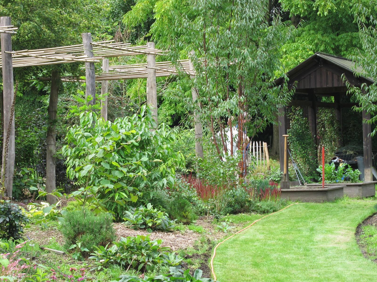 Jardin studio de Luc Noël