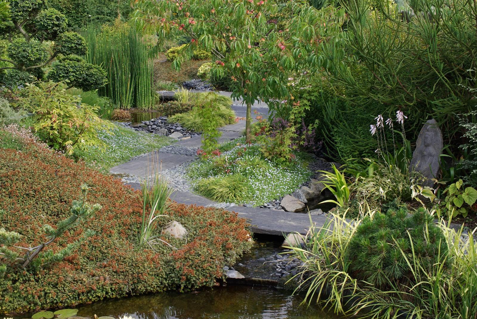 Amoena jardin zen
