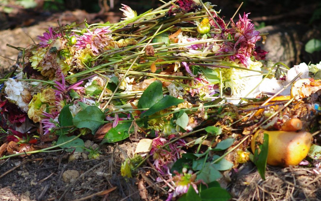 Le Mulch, couvrir et nourrir le sol