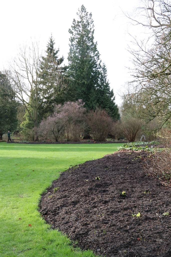 Mulch jardin
