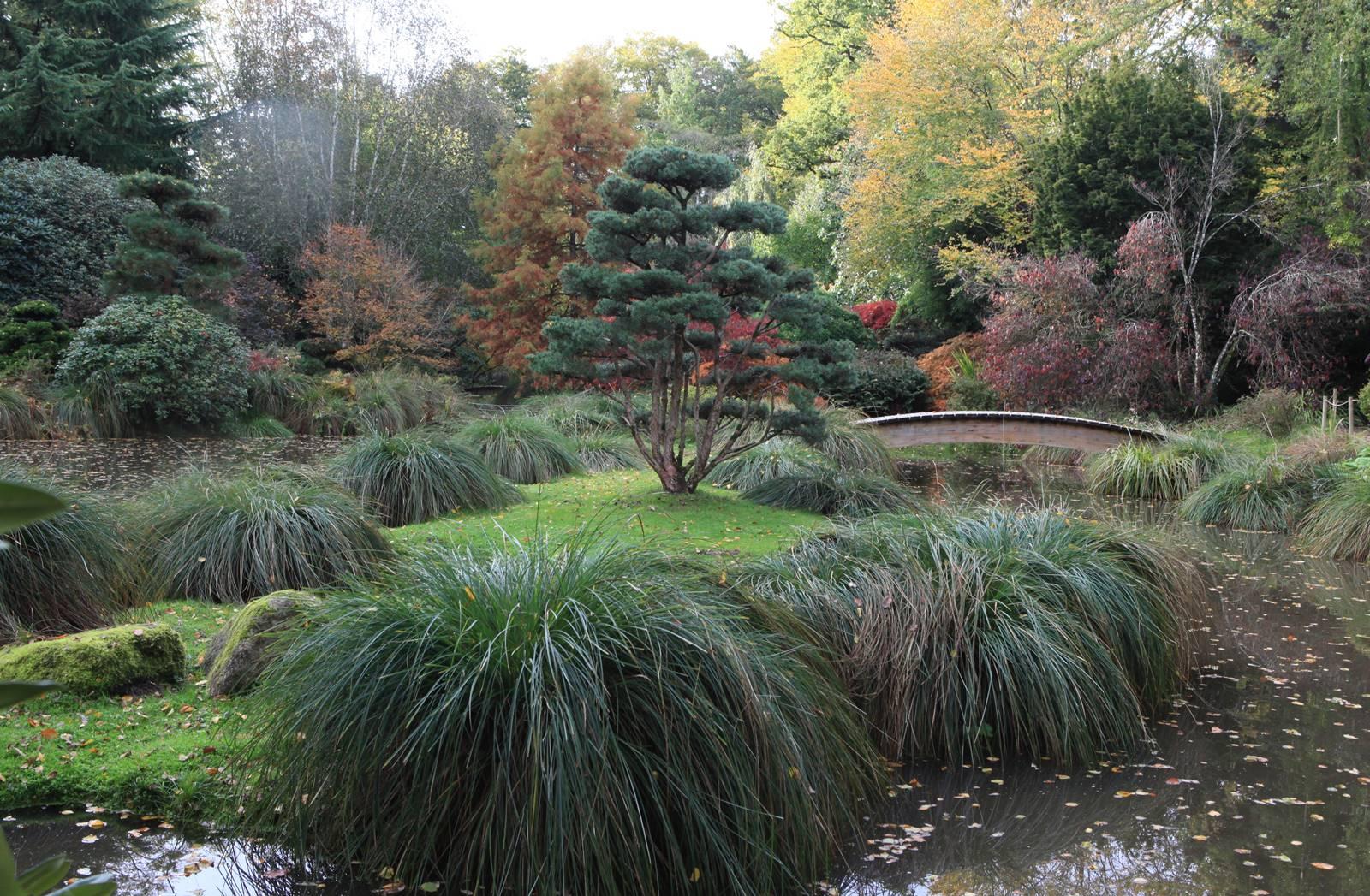 Parc botanique de Haute Bretagne en Ille-et-Vilaine