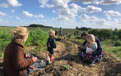 Le Potager de la Marache, en permaculture