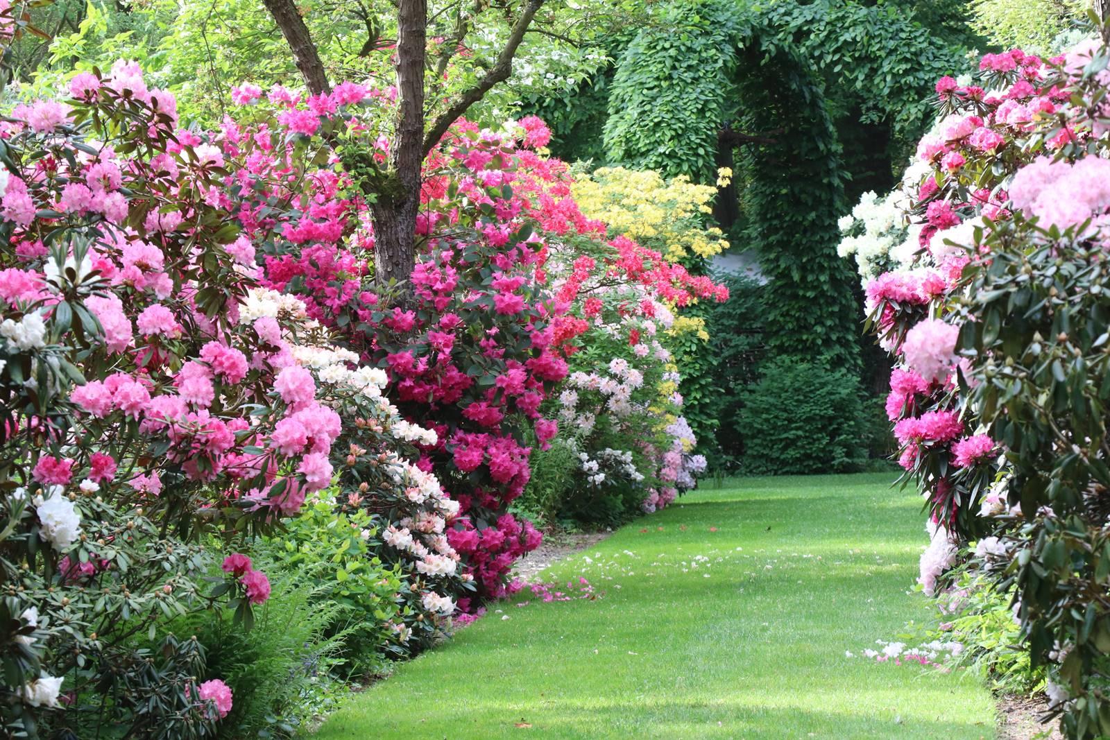 Sol acide jardinage