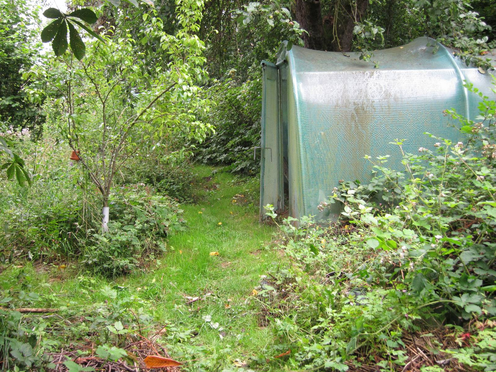 Jardin vivant de Marc Knaepen