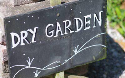 Canicule et sécheresse, comment sauver son jardin?