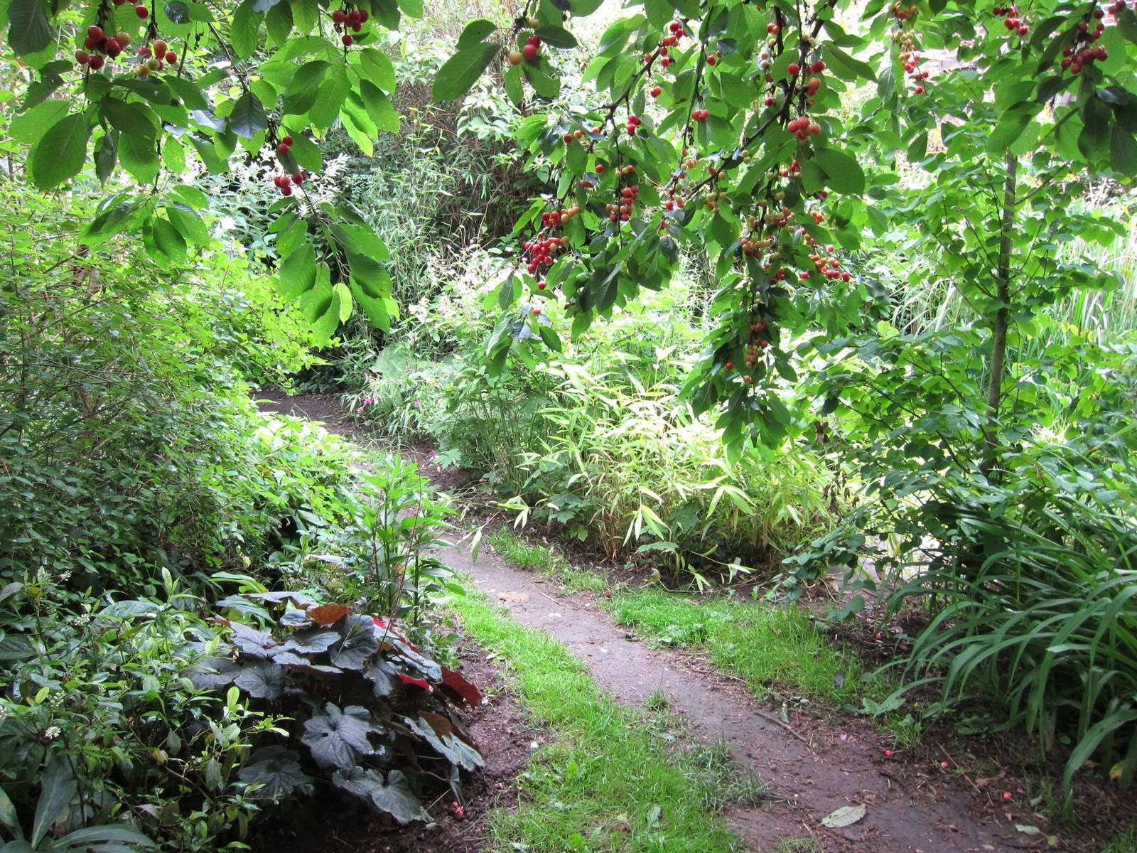 Guide du Jardin bioclimatique