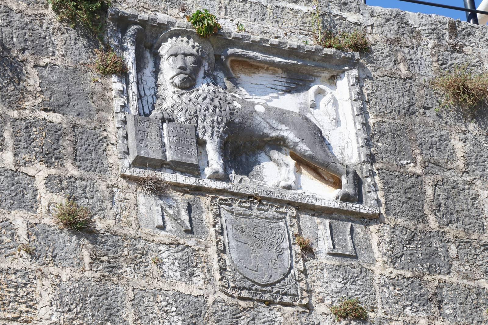 Porc lion de Venise