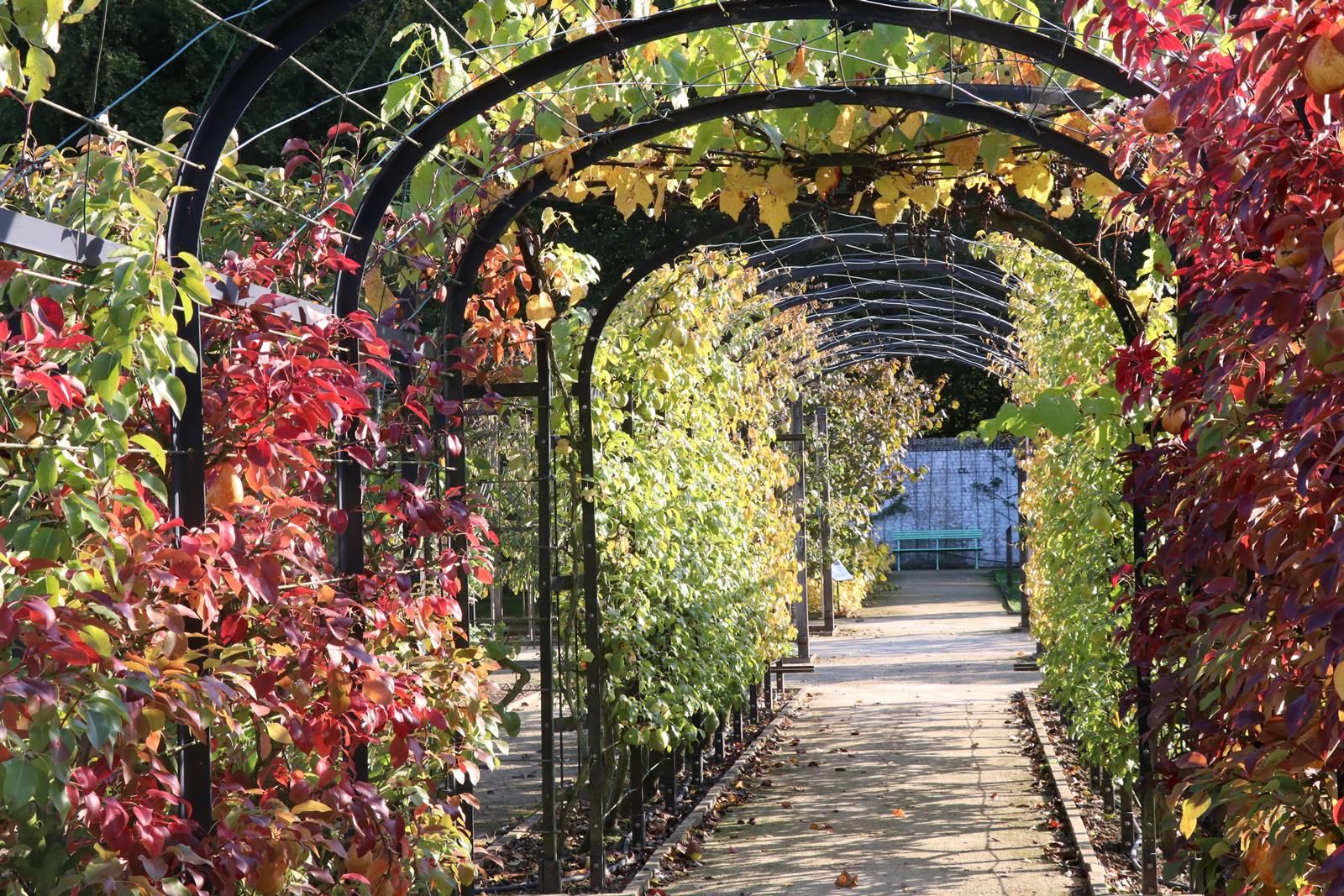 Jardin musée de Gaasbeek