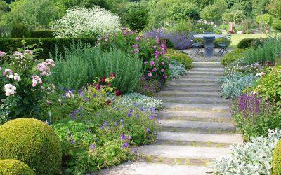 Quel chemin pour le jardin?