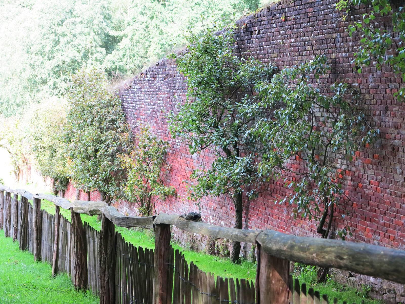 Jardin Abbaye d'Aywiers (5)