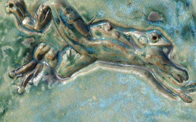Froggies Paradise, au bonheur des grenouilles