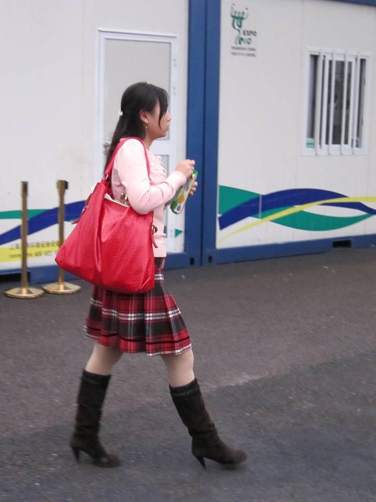 Expo Shanghai 2010 (10)
