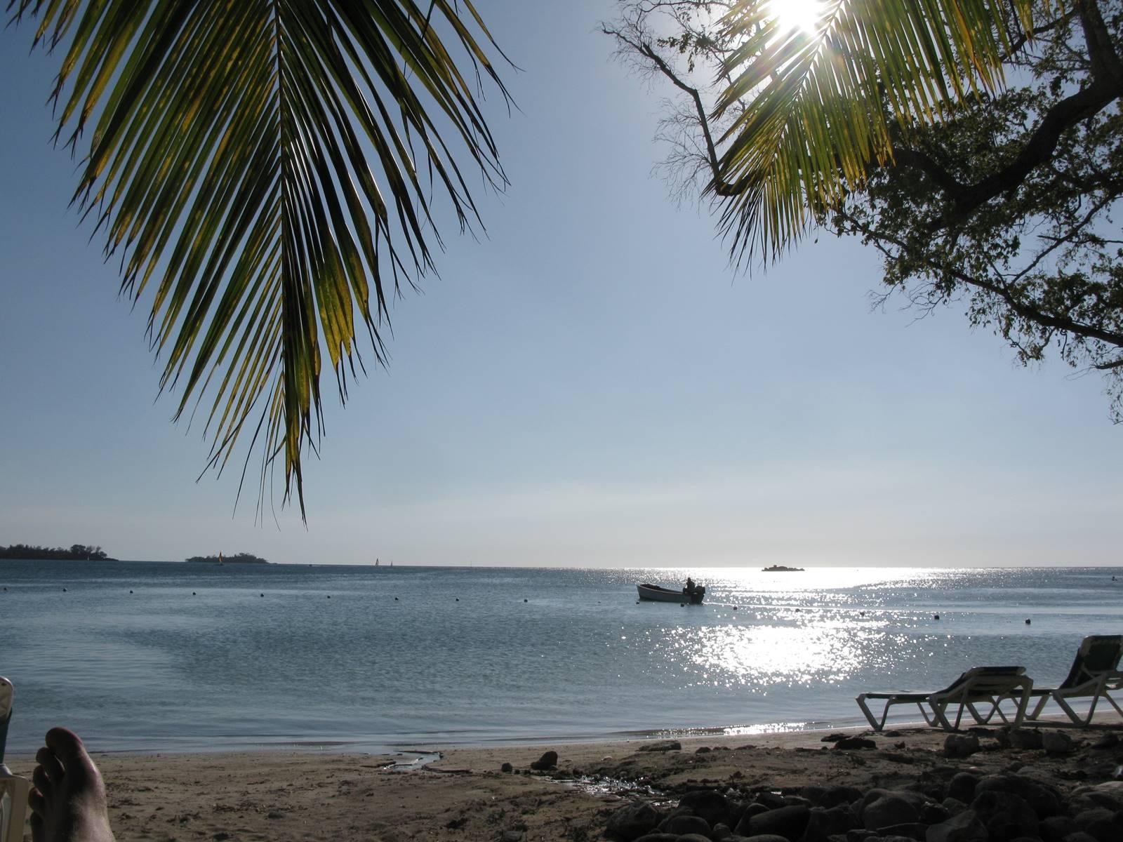 Jamaique Caraibes (14)