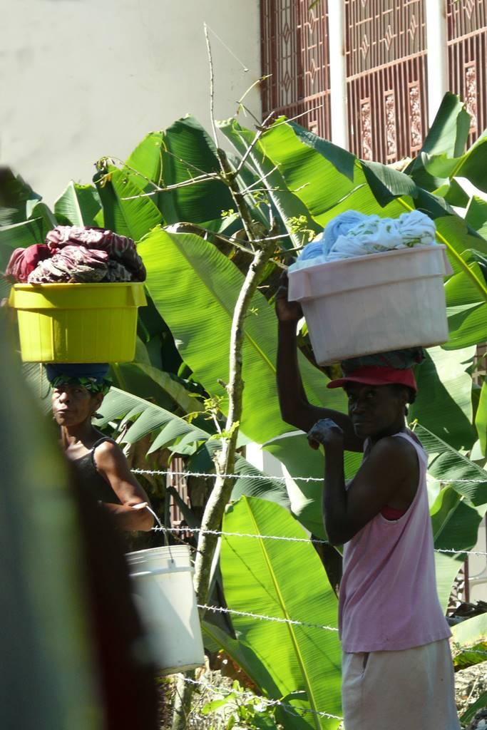 Jamaique Caraibes (9)