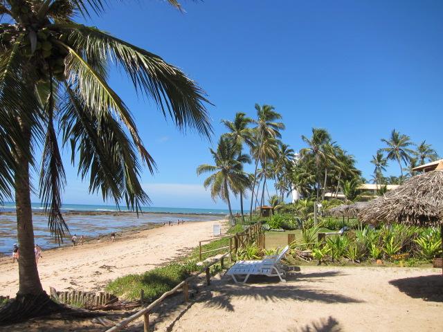 Praia do Forte (5)