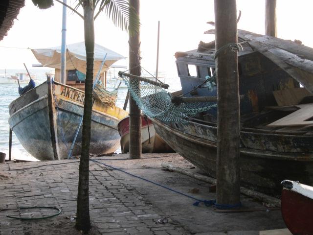 Praia do Forte (9)