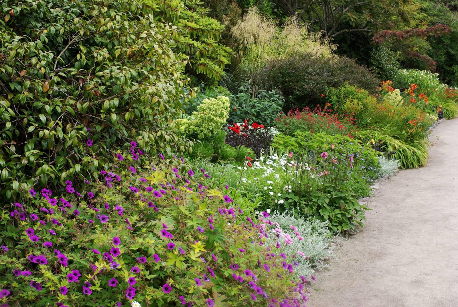 Inverewe Garden Scotland (18)